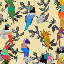 jungle bird colores