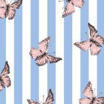 mariposa rayas