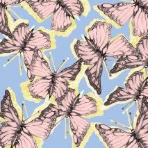 mariposa4
